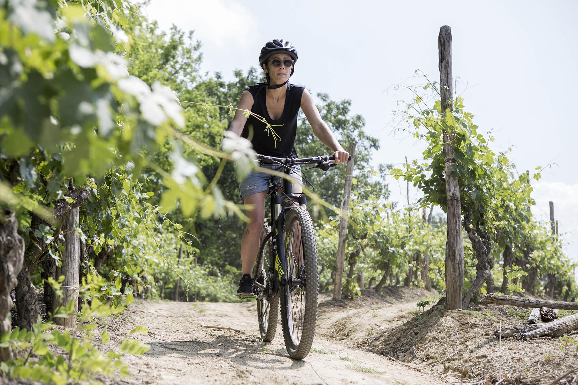 menscorpore-experience-vineyard-biking-01