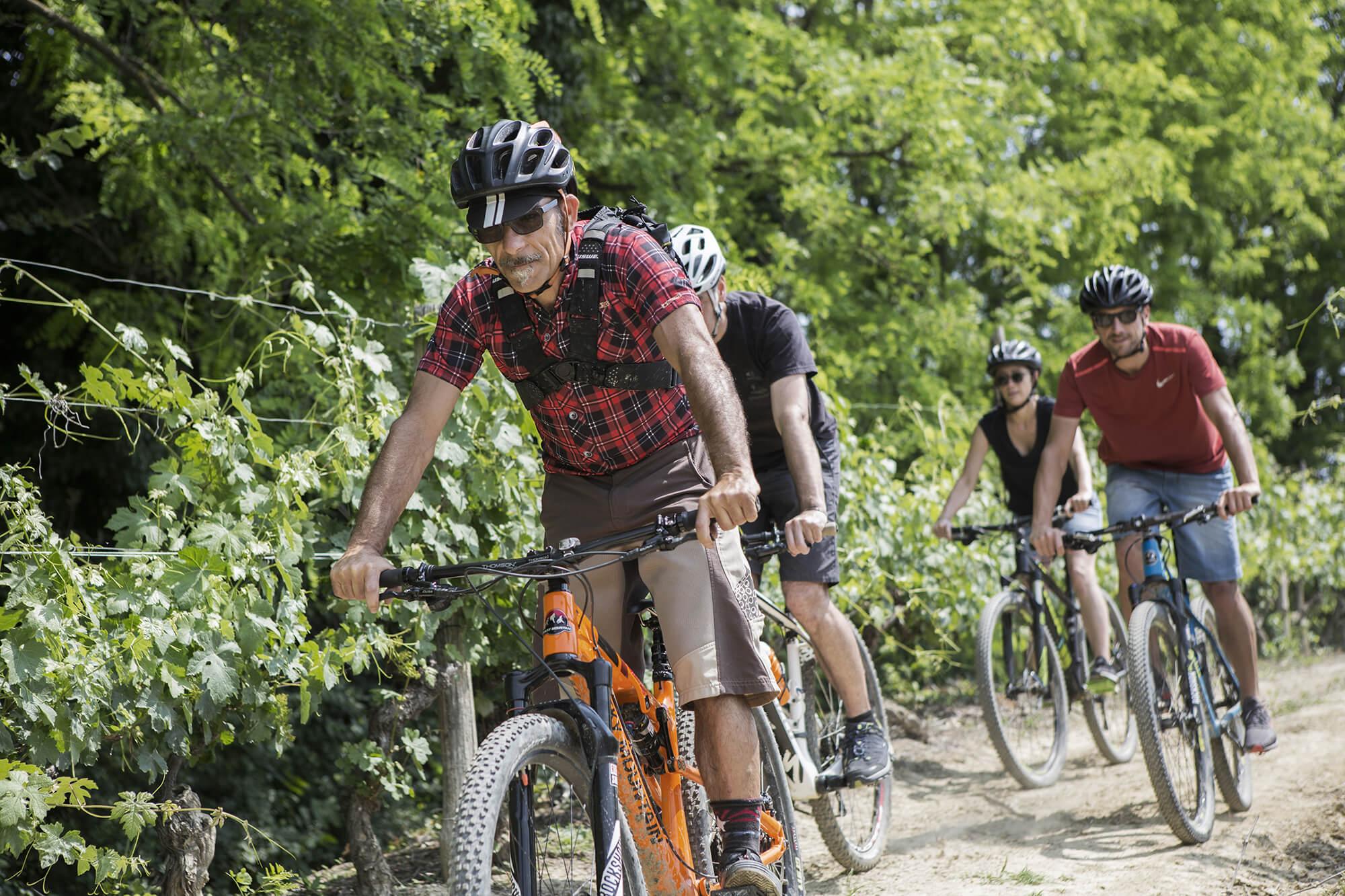 menscorpore-experience-vineyard-biking-02